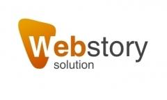Profesionální návrh a analýza webu